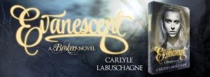 evanescent tour banner