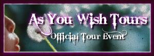 phantom dreams tour banner