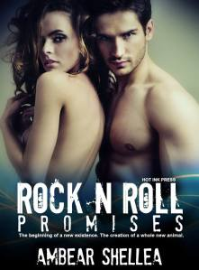rock n roll promises cover pic