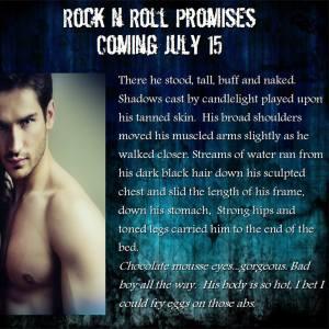 rock n roll promises excerpt